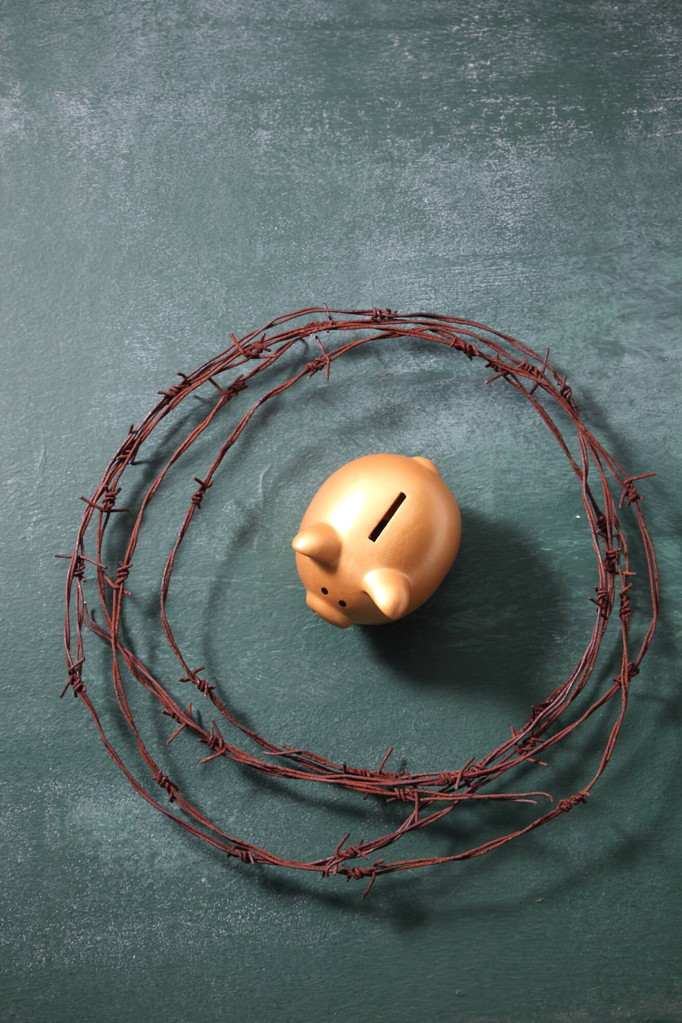 piggy bank surrounded by barbed wire